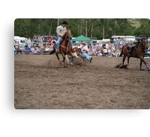 Picton Rodeo STEER1 Canvas Print