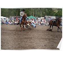 Picton Rodeo STEER1 Poster