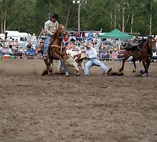 Picton Rodeo STEER2 by Sharon Robertson