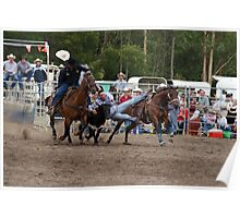 Picton Rodeo STEER3 Poster