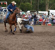 Picton Rodeo STEER5 by Sharon Robertson