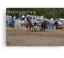 Picton Rodeo STEER6 Canvas Print