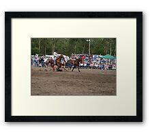 Picton Rodeo STEER7 Framed Print