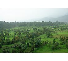 A beautiful green countryside, part of the Kangra Hills Photographic Print