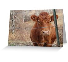 The Red Cow Greeting Card