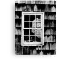 LOOKING THROUGH THE WINDOW Canvas Print