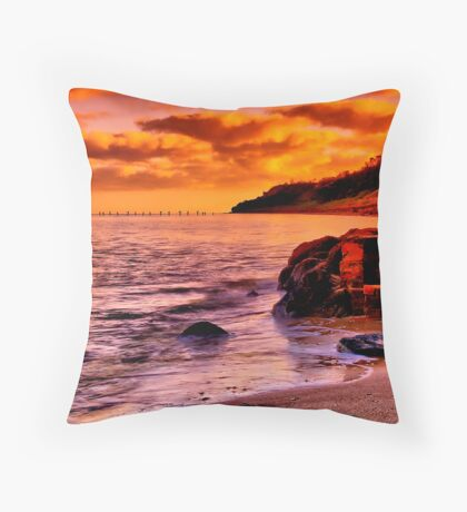 """""""Remnants of a Relaxing, Refreshing Pastime"""" Throw Pillow"""