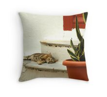 Summer in Mykonos Throw Pillow