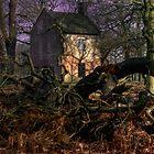 The Little House II by Tony Wilkinson