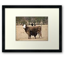 Mama and Baby Framed Print