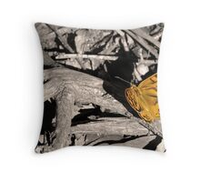 """Common Brown butterfly """"Heteronympha merope"""" Throw Pillow"""
