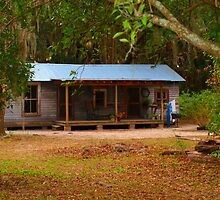 Old Florida Cracker House by Judy Gayle Waller