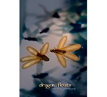 Dragon Floats © Vicki Ferrari Photographic Print