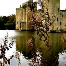 Bodium Castle from the bank by Siegeworks .