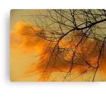 Web of Contrast Canvas Print