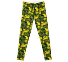 Buttercup Leggings Leggings