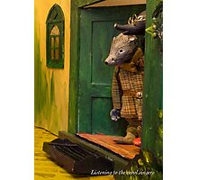 Wind in the Willows - Listening to the carol singers Photographic Print