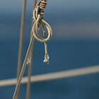Slip Knot by jukeboxphoto