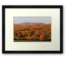 Peak Foliage - Vermont Framed Print