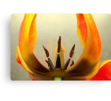 Show Off Canvas Print