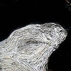 Wooden Whorls by Dennis Blauer