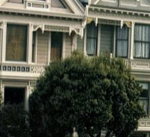 And Painted Ladies All In A Row.. Sticker