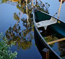Floating on Eucalyptus by Kevin Bergen