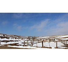 Winter Pasture Photographic Print