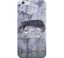 The Lion Of Lucerne iPhone Case/Skin