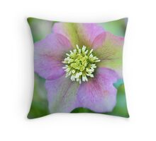 Floral Ombre Throw Pillow