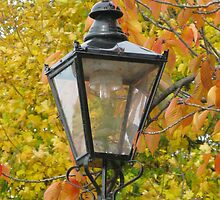 Lamp standard in Richmond by richalfa156