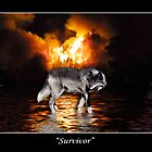 &quot;Survivor&quot; Wolf Poster by Val  Brackenridge