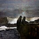 Winter Sea Song by Mary Ann Reilly