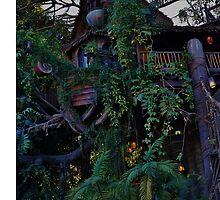 Tarzan's Tree House by rachelgracey