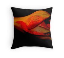 Bi-Colour Amarayllis Throw Pillow
