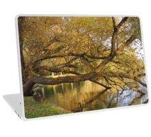 Autumn on my mind Laptop Skin