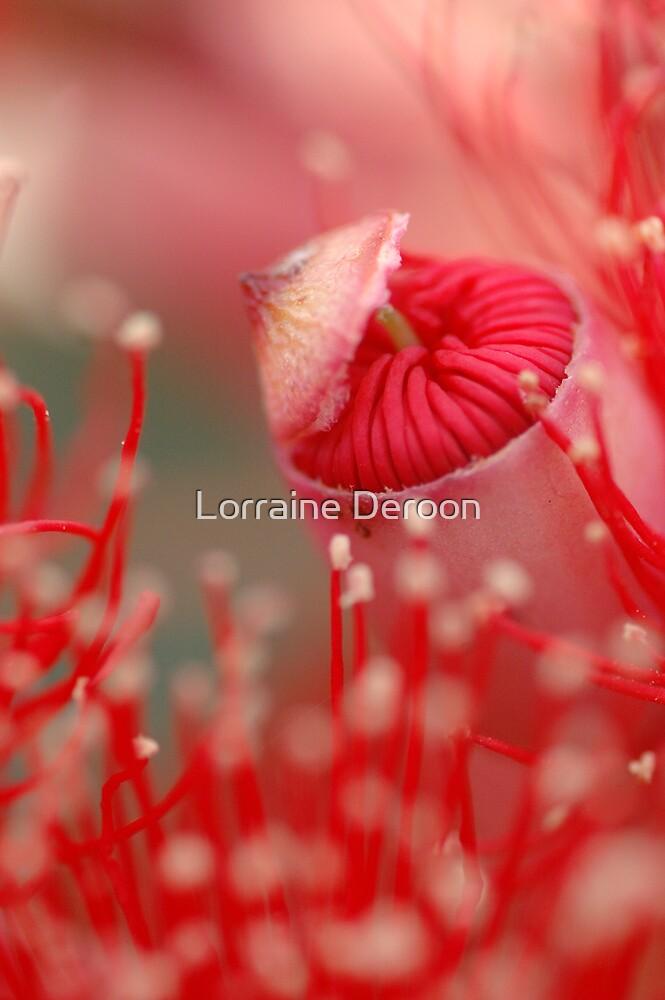 Wildfire by Lorraine Deroon