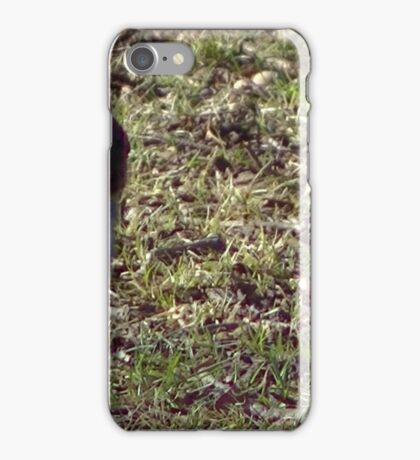 Windy Day - The Blue & The Green 001 iPhone Case/Skin