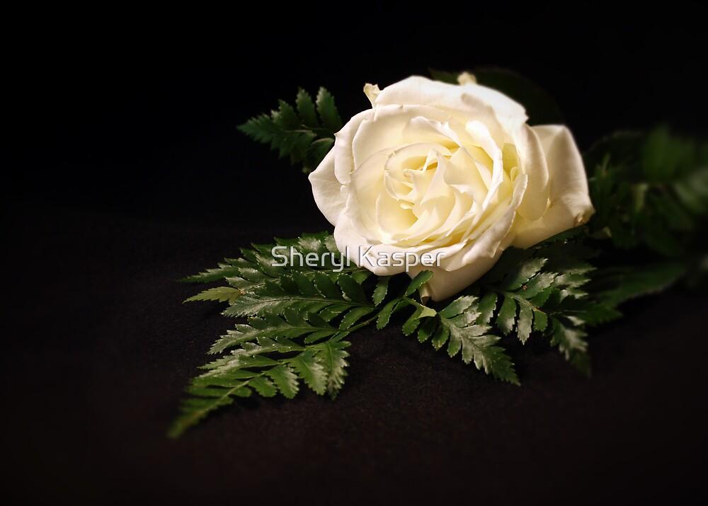 White Rose by Sheryl Kasper