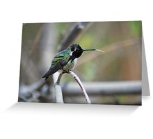 Hummingbird Tounge  Greeting Card