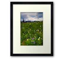 Meadow Beneath the Storm Framed Print