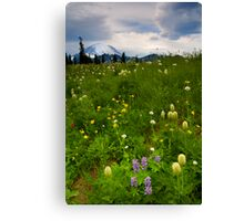 Meadow Beneath the Storm Canvas Print