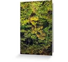 Autumn reflections in the Rhone river Greeting Card