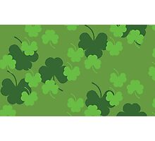 Shamrock or clover 4 Photographic Print