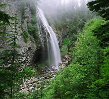 Narada Falls - Mt. Rainier National Park by Julia Washburn