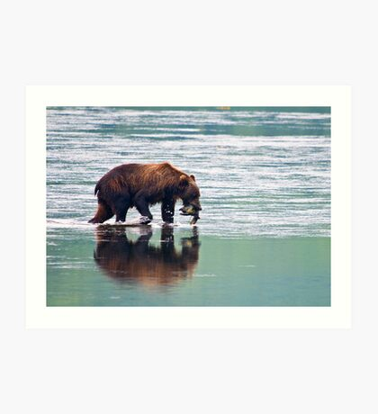 Kodiak Bear Sow with a Pink Salmon. Art Print
