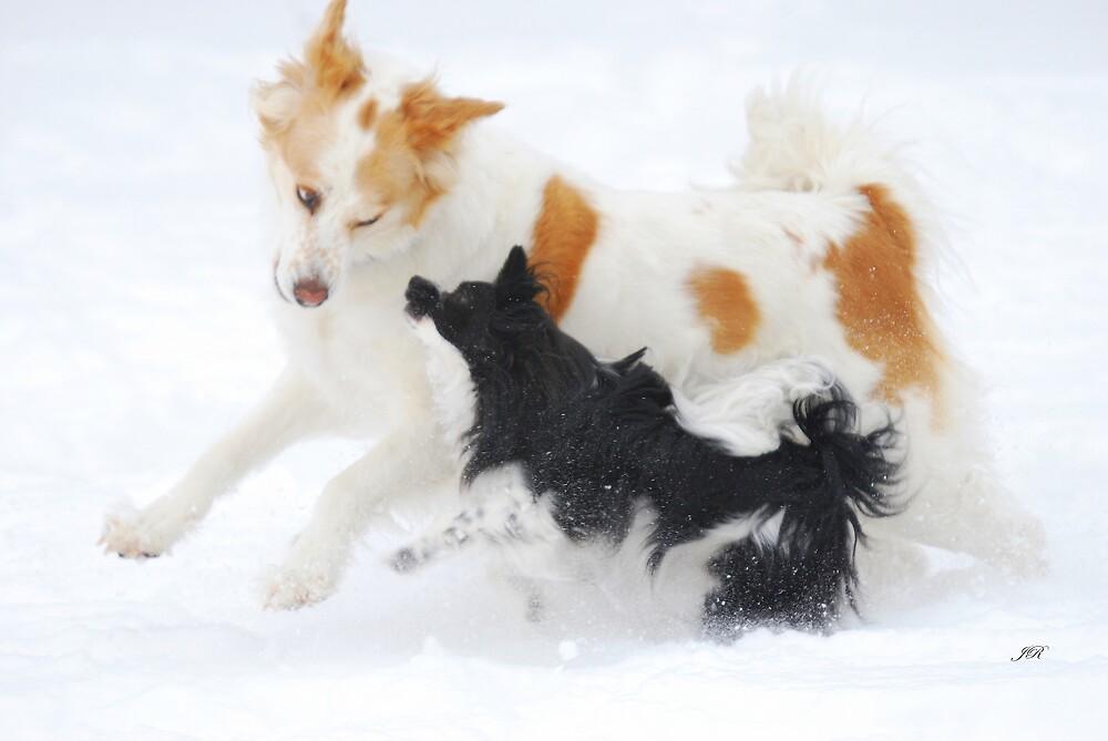 Snow Play by blindwolfspirit