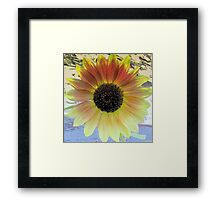 LOOKING  INTO A  SUNFLOWER    Framed Print