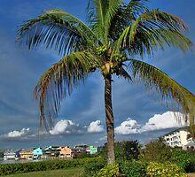 Perfect vacation spot by LudaNayvelt
