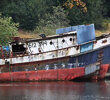 Old Boat by Julia Washburn